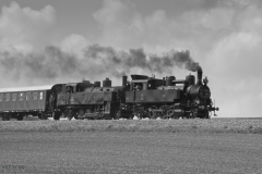 Sonderfahrt 93.1420 nach Ernstbrunn 2013