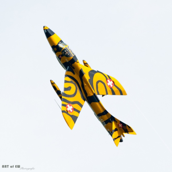 Tigerhunter - Zigermeet 2011