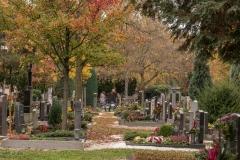 schöner Friedhof in Linz