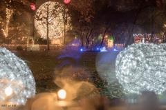 Lichtspiele am Christkindlmarkt