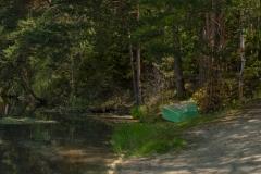 Brunauteich, Waldviertel